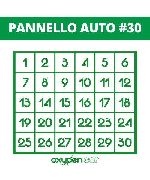 pannello_auto30